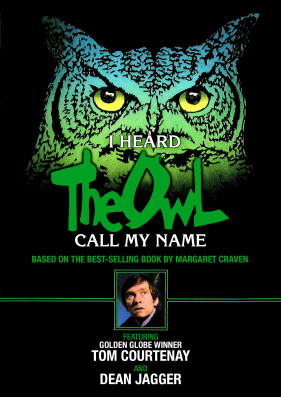Kino Owl