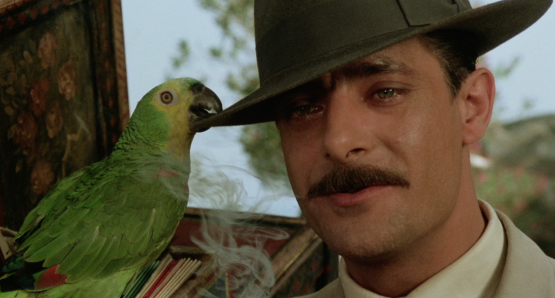 Giancarlo Giannini as Pasqualino Frafuso aka Settebellezze in SEVEN BEAUTIES.